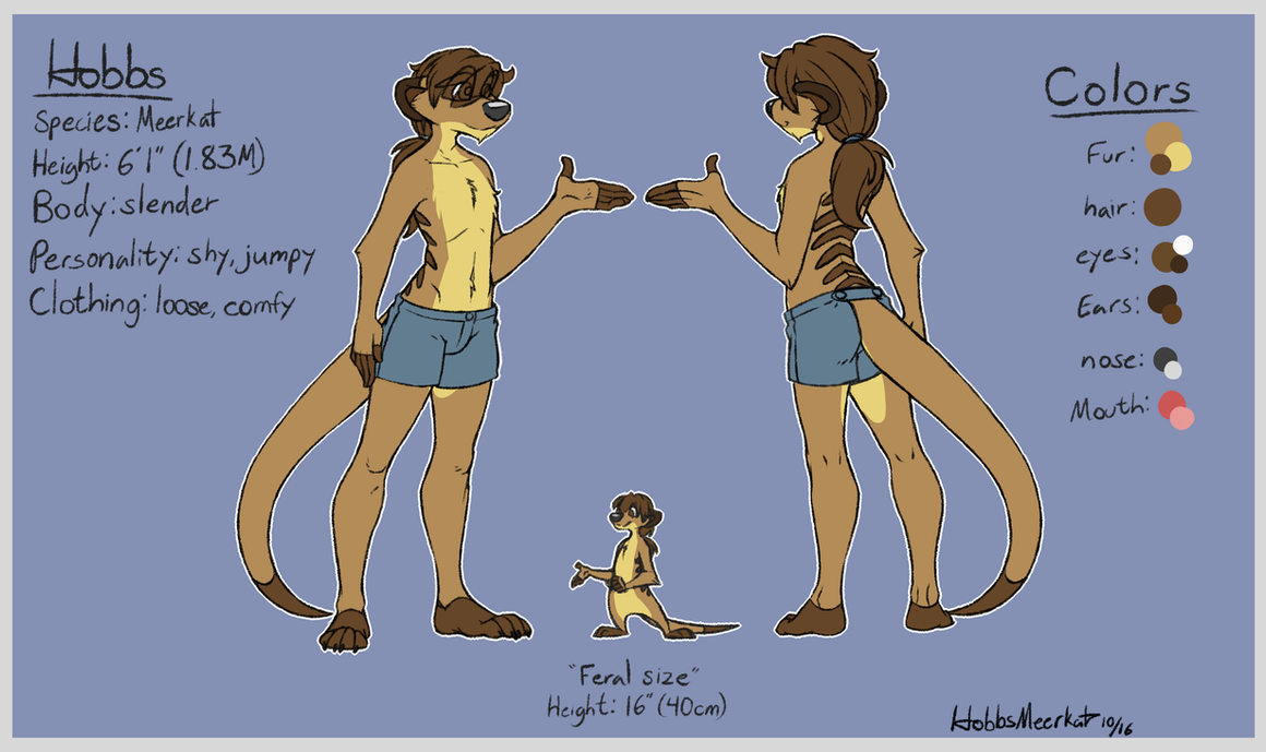 Reference: Hobbs the Meerkat by HobbsMeerkat