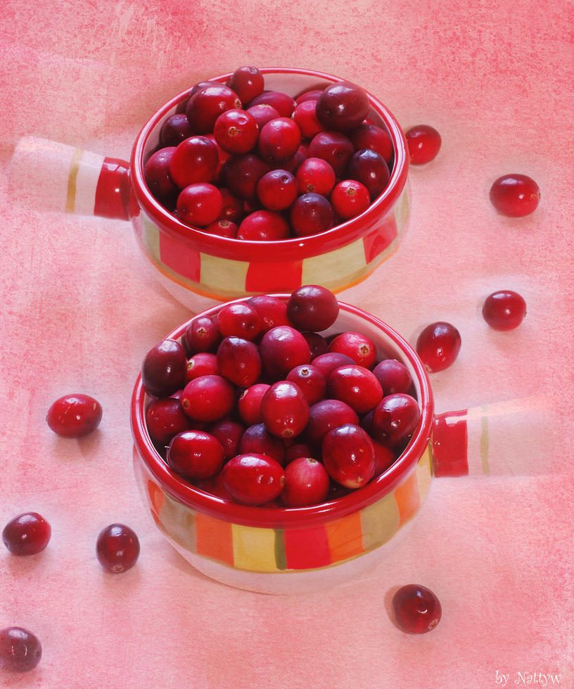 Cranberry flavor II by Nattyw