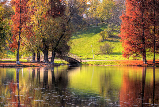 Rusty Autumn morning by seraphRo