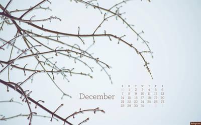 December 2014 by kriegs