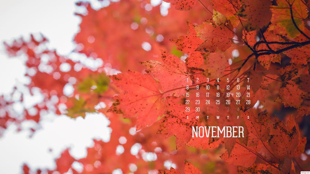 November 2015 by kriegs