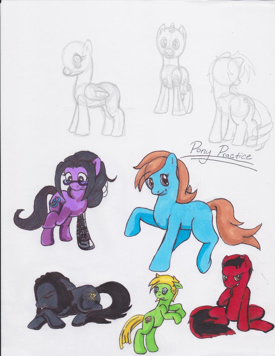 My Little Pony Anatomy