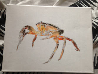 acrylic painted crustacean