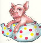 Teapot Piggy