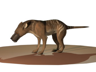 Hyaenodon by FennecFyre