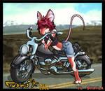 Biker Mousie CL