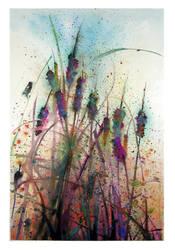 Cattails by richardcgreen