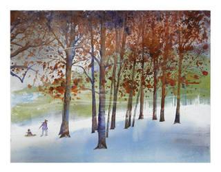 Winter Sliding Hill by richardcgreen