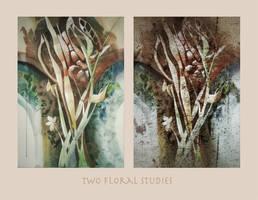 Two Floral Studies