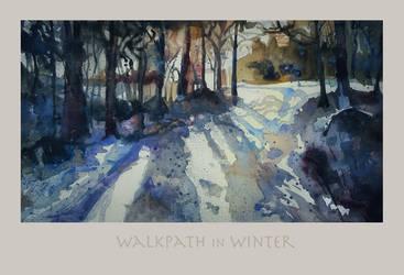 Walkpath in Winter by richardcgreen