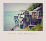 Houses on Tiburon Bay~California by richardcgreen