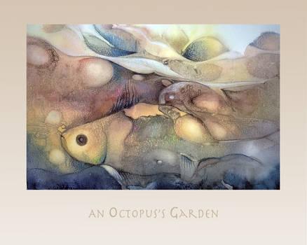 An Octopus's Garden