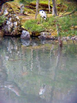 Reflection at Tenryuuji