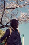 Last spring..