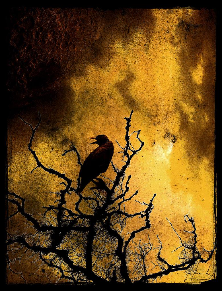 Mortal Skies by IrondoomDesign