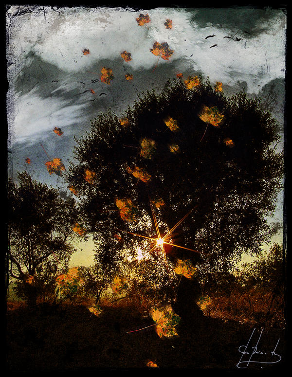Autumn's Rebirth by IrondoomDesign