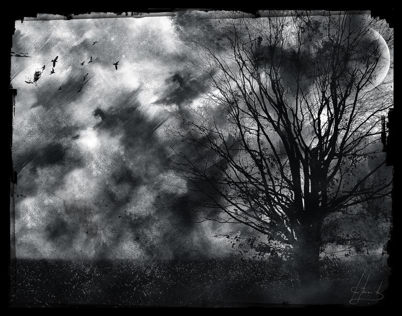 Serenity Forgotten by IrondoomDesign