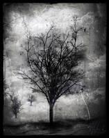 Silent... by IrondoomDesign