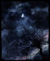 Silent Moon by IrondoomDesign