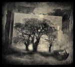 Fragments Of Dreams