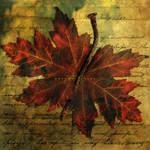 Autumn Letter