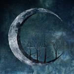 Hopefulness On The Moon