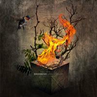 Burning Elementarity