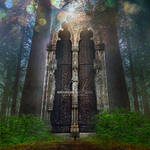 Forest Of Salvation