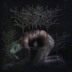 Birth Of A Nature Submerged In My Being