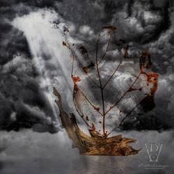Navem In Tempestate