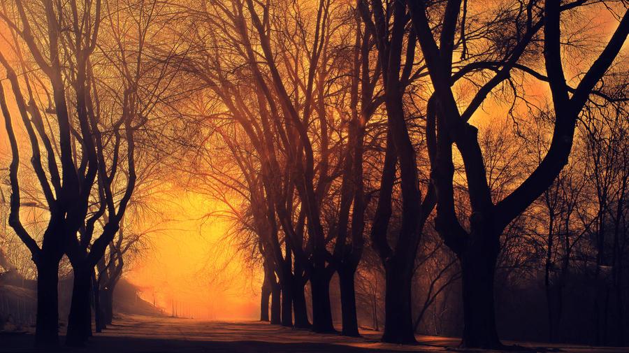 twilight by kriakao