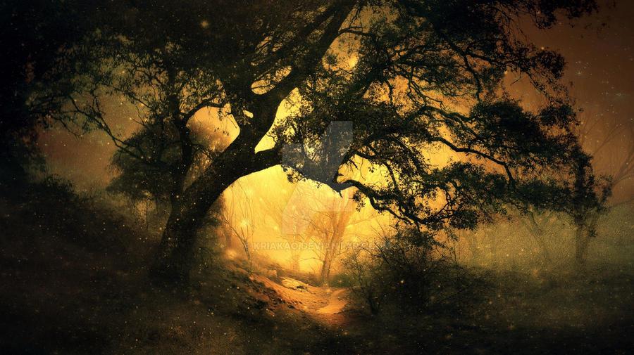 la luz.. by kriakao