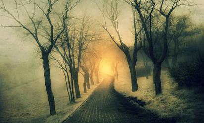 ..caminante no hay camino, se hace camino al andar by kriakao