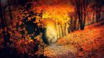 crazy autumn by kriakao