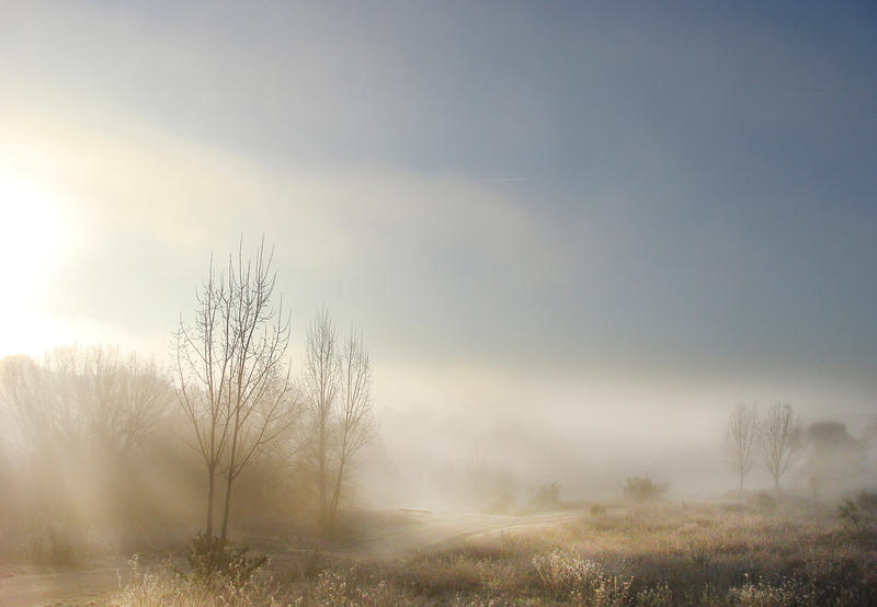 bajo la magia de la niebla by kriakao