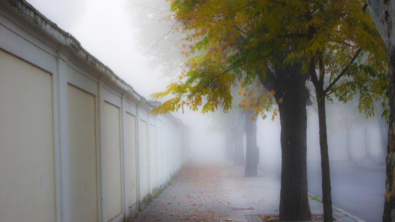 la niebla by kriakao