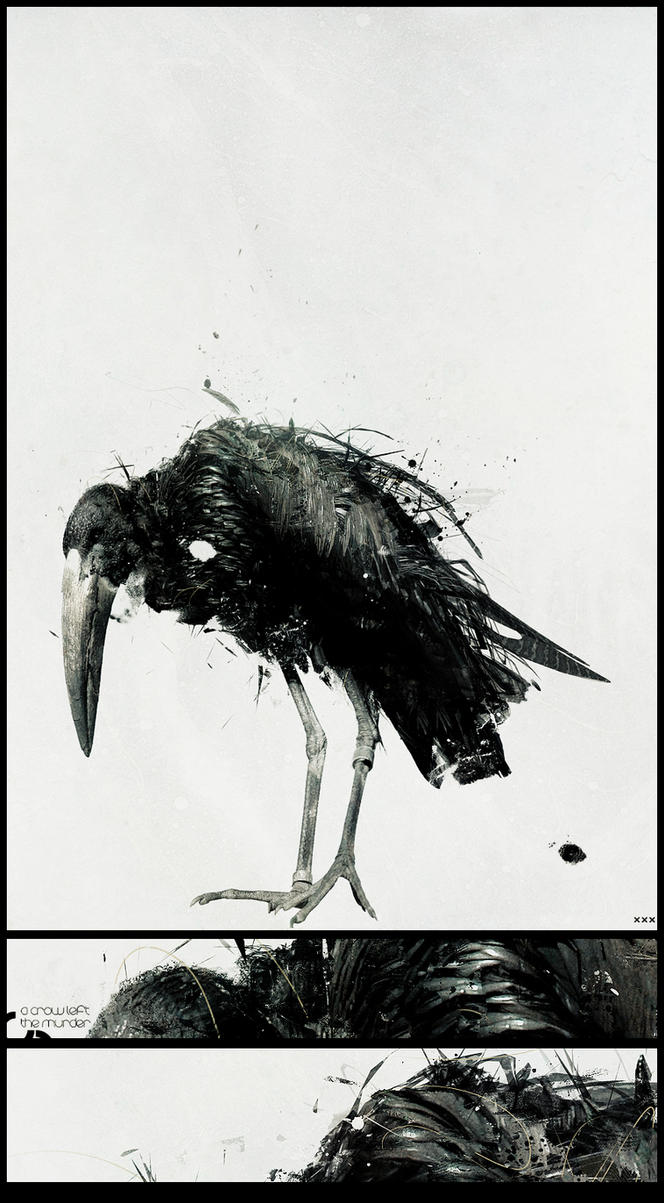 A crow left the murder by soad2K
