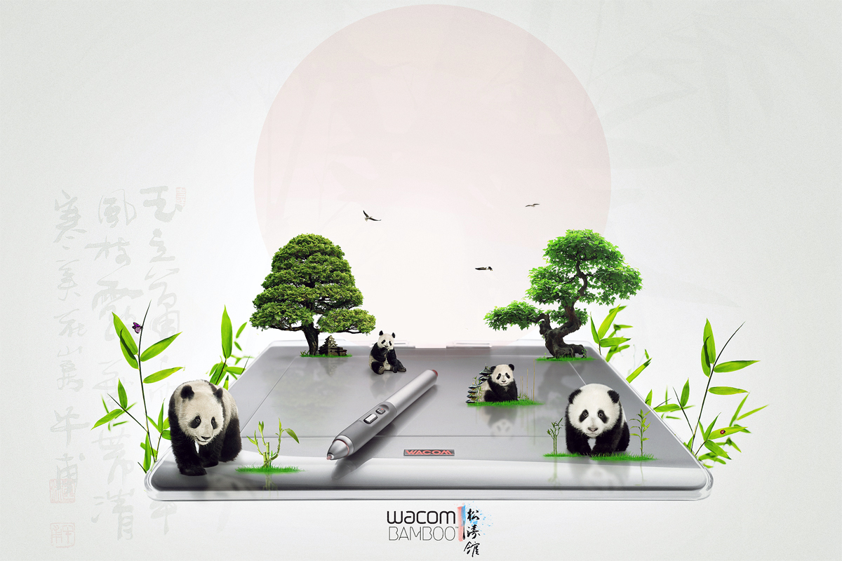 Wacom Bamboo by soad2K