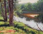 Banks Of the Coxs River