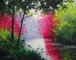 Quiet Stream by Graham Gercken