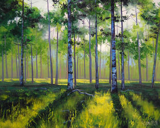 Aspen Trees by artsaus