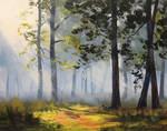 Sunrays through the forest