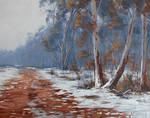 Australian Snowscape