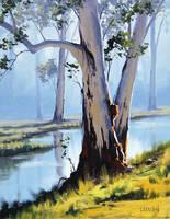 riverside gums by artsaus