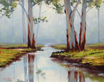Red River Gums Australia