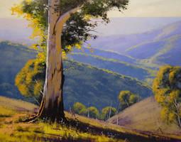 Summer Hills by artsaus