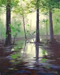 Mantons Swamp