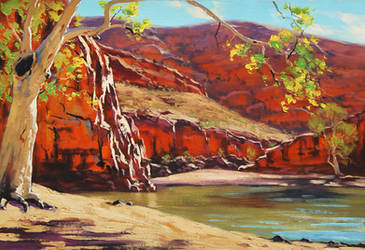 Outback Australia by artsaus