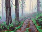 Misty Redwood Forest
