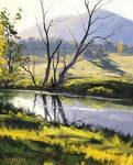 River Bank Tarana, Australia
